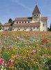 Quelle: Georgskirche in Reichenau © jehafo – Adobe Stock